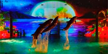水族館でのデジタルサイネージ活用