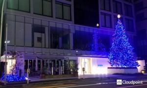 「Aoyama Rising Tree」_01