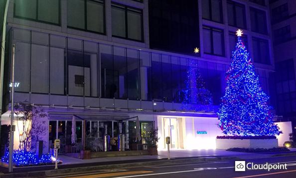 AOYAMA Rising Tree デザイン/LED納品