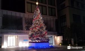 「Aoyama Rising Tree」_02
