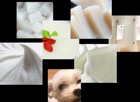 「 TANYO の白って…どんな白?」のご質問、わかりやすく説明します!