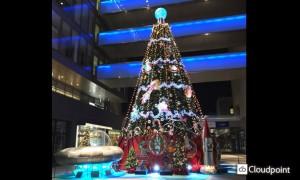 ガリレアクリスマスツリー