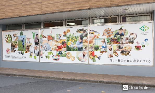 校舎壁面を賑やかに演出したグラフィック装飾 学校のコンセプトと生徒の夢を再現